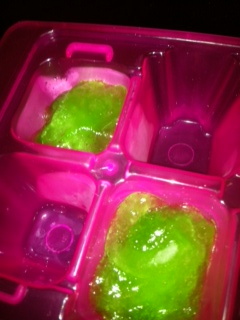 aloe ice tray