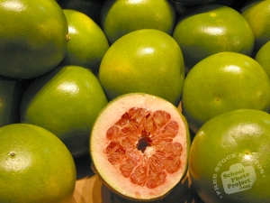 grapefruit-photo3-l