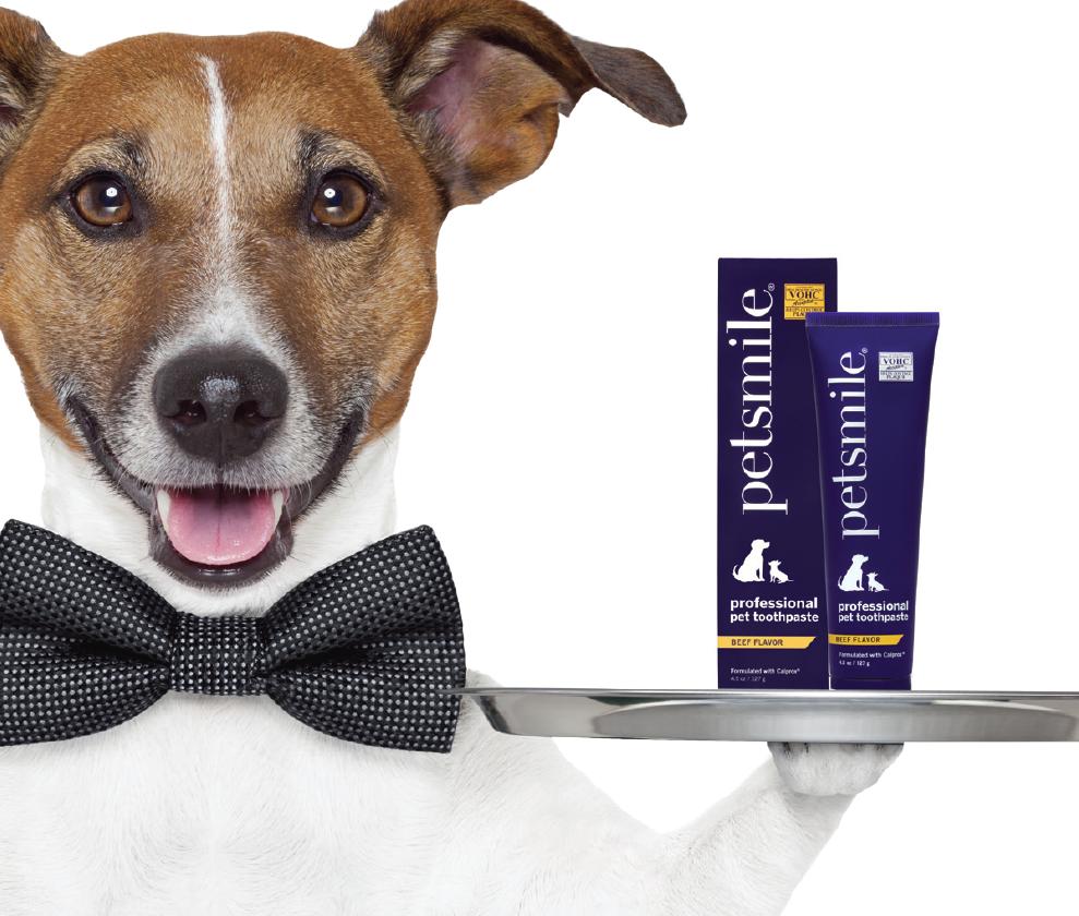 Best Dog Toothpaste For Gingivitis