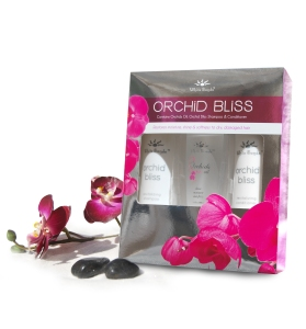 orchid_bliss_pack_3979_orchid