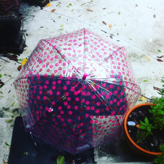 umbrella-hurricane-blog-10-2017