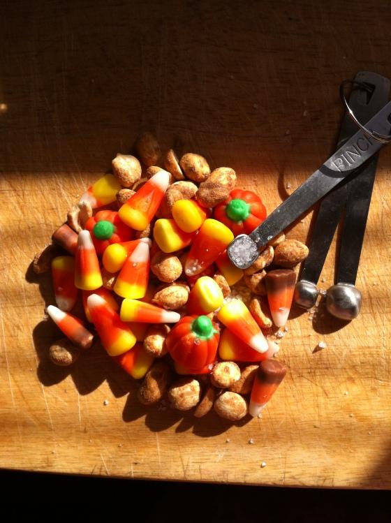 acorns-blog-photo