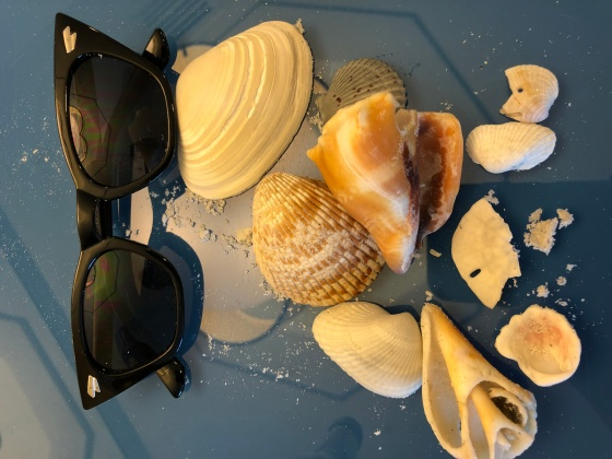 Seashells and Sunnies IMG_0733