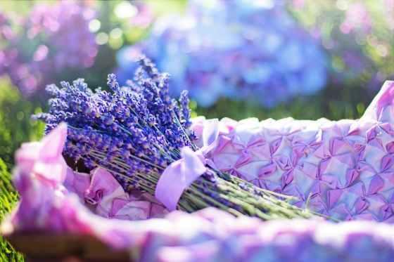 aroma aromatherapy aromatic basket