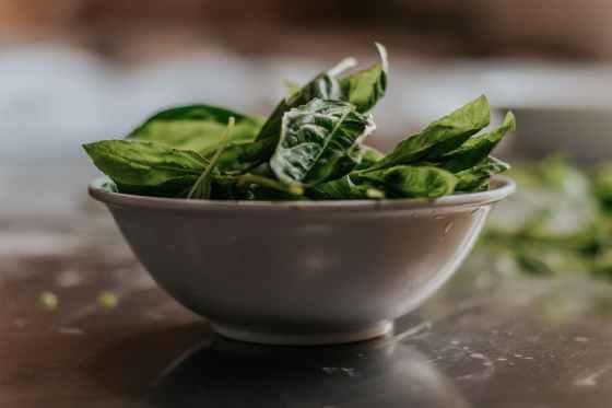 green leaves in white ceramic bowl